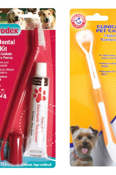 Chip and Daisy Approved – Pet Dental Health Month {review}