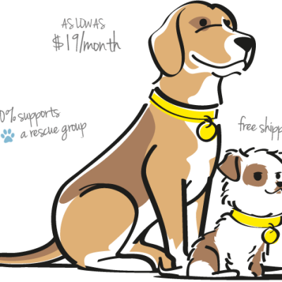 Chip and Daisy Approved: BarkBox Review