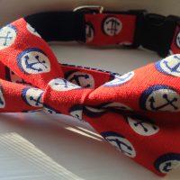 dog collar, giveaway