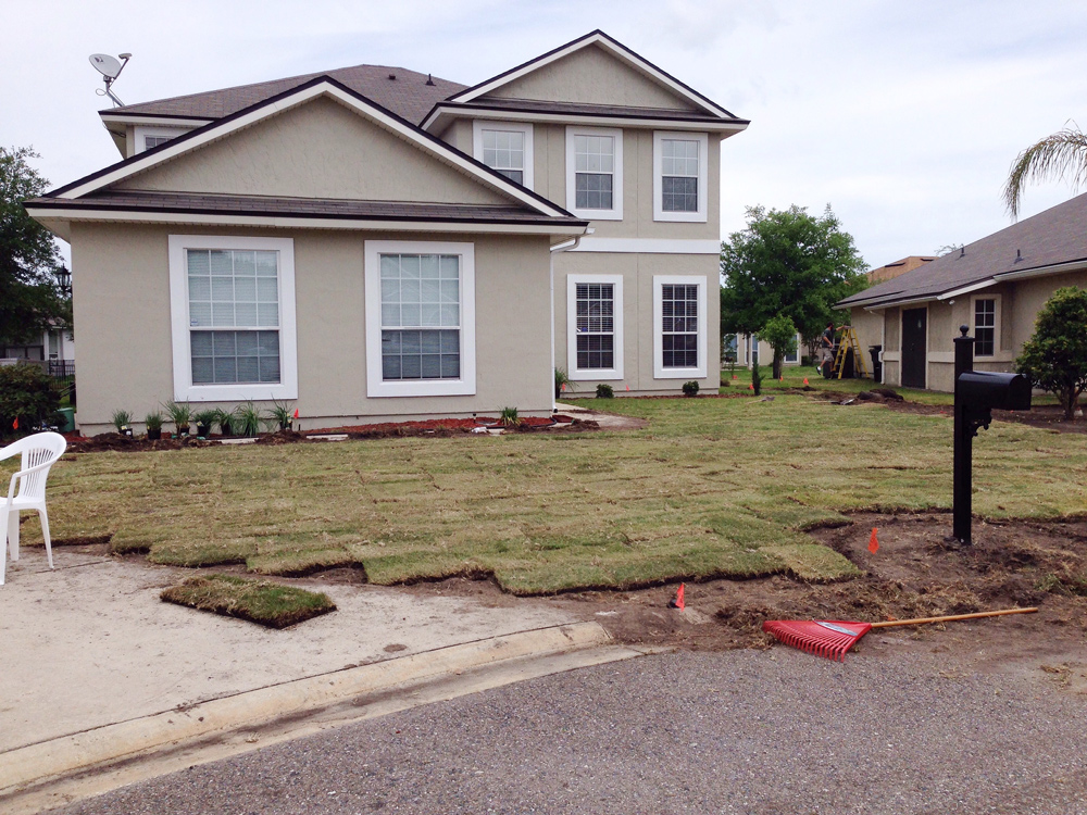 a bad zoysia sod installation job