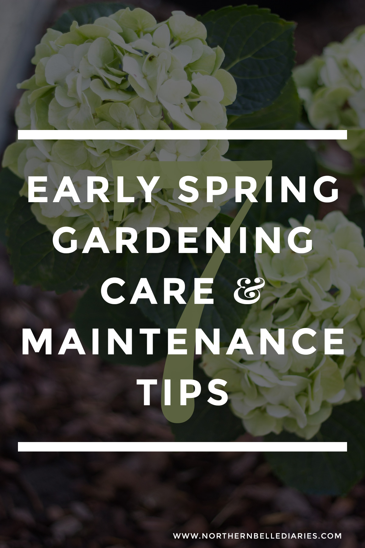7 Early Spring Gardening Care & Maintenance Tips #LoveYourLawn #garden #gardentips #ad