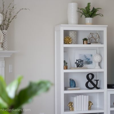 A Bookshelf in Progress