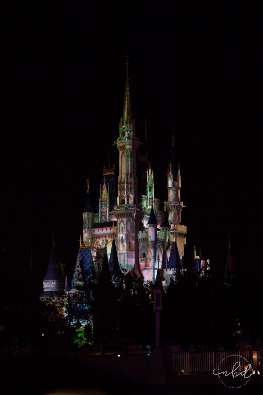 Magic Kingdom Cinderella's castle during Illuminations