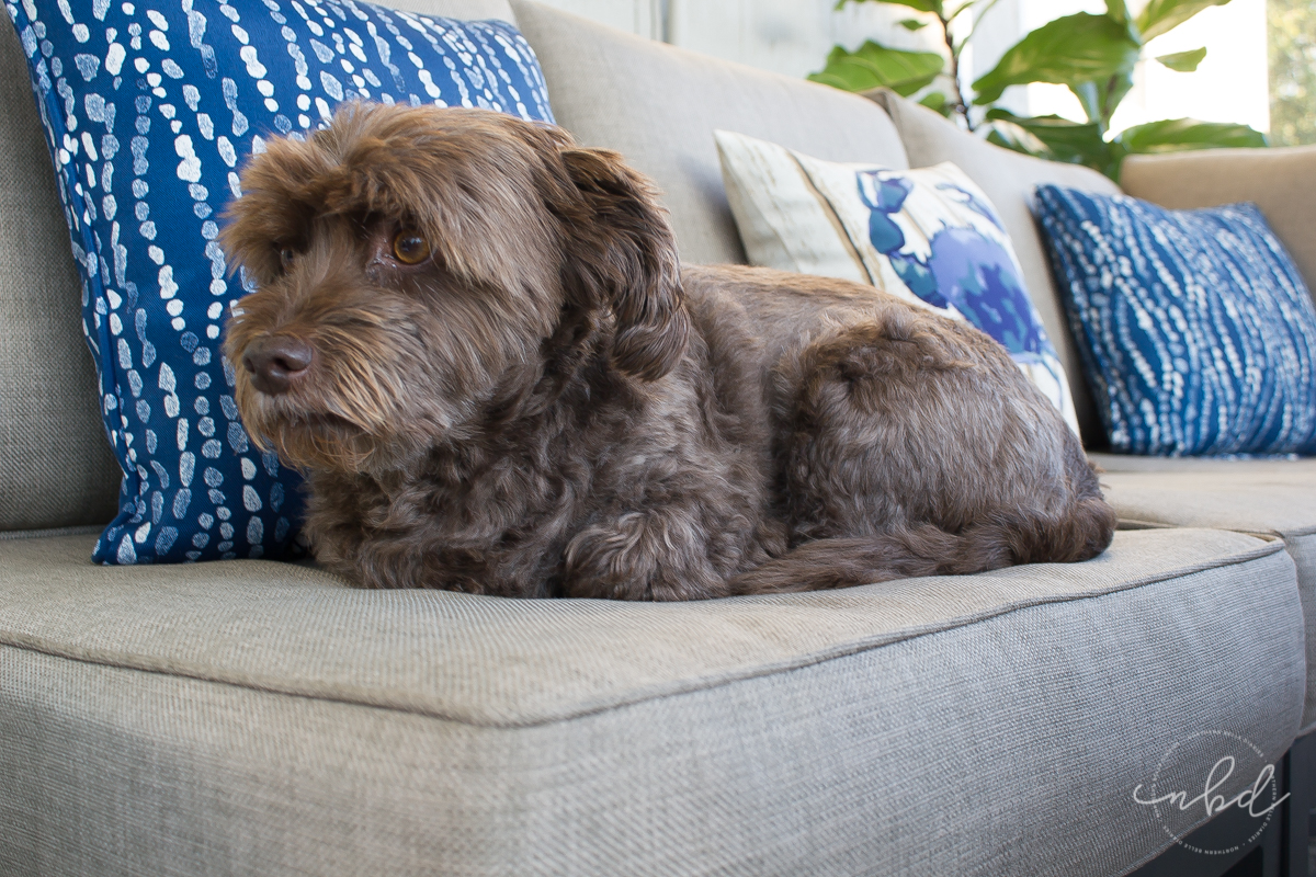 Lowe's #MyOutdoorOasis throw pillows and cushioned patio set with puppy - Northern Belle Diaries