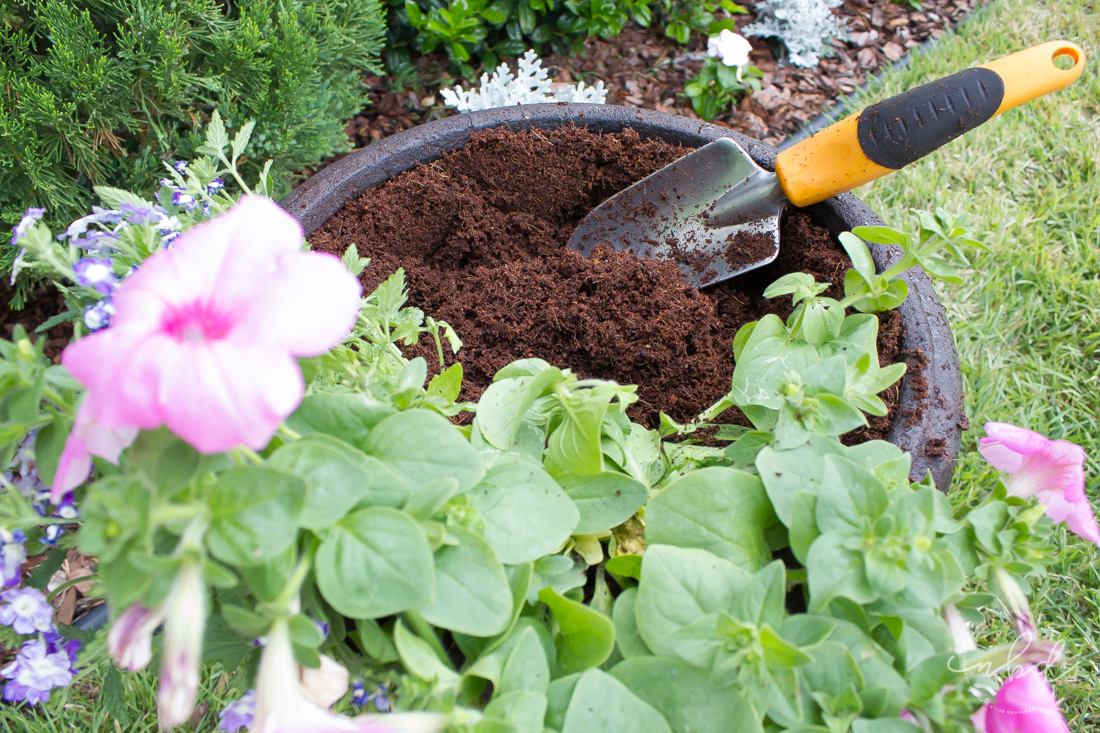 Making a trench - How to Create a Beautiful Planter