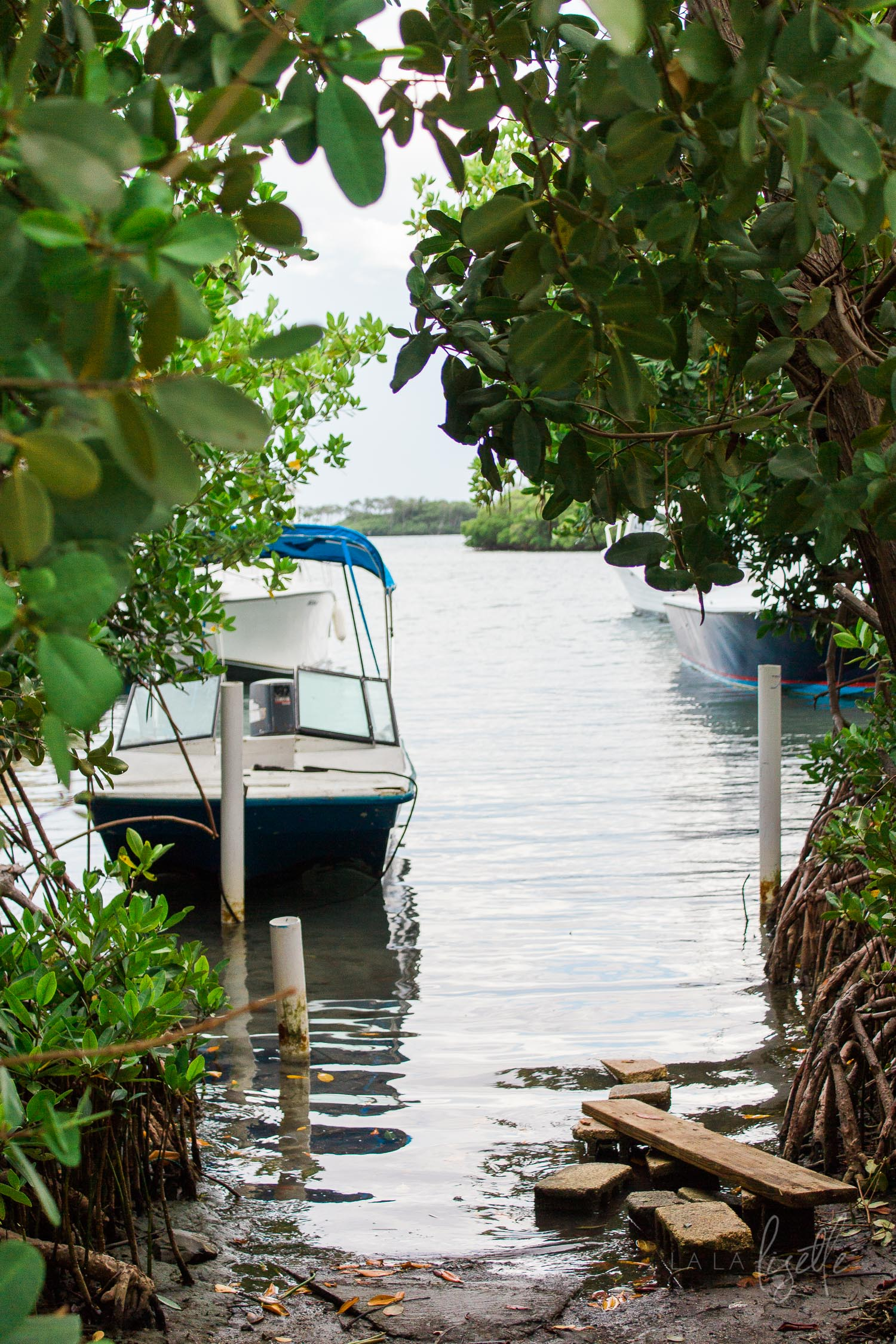 boat-docked-in-bay-in-La-Parguera-Puerto-Rico