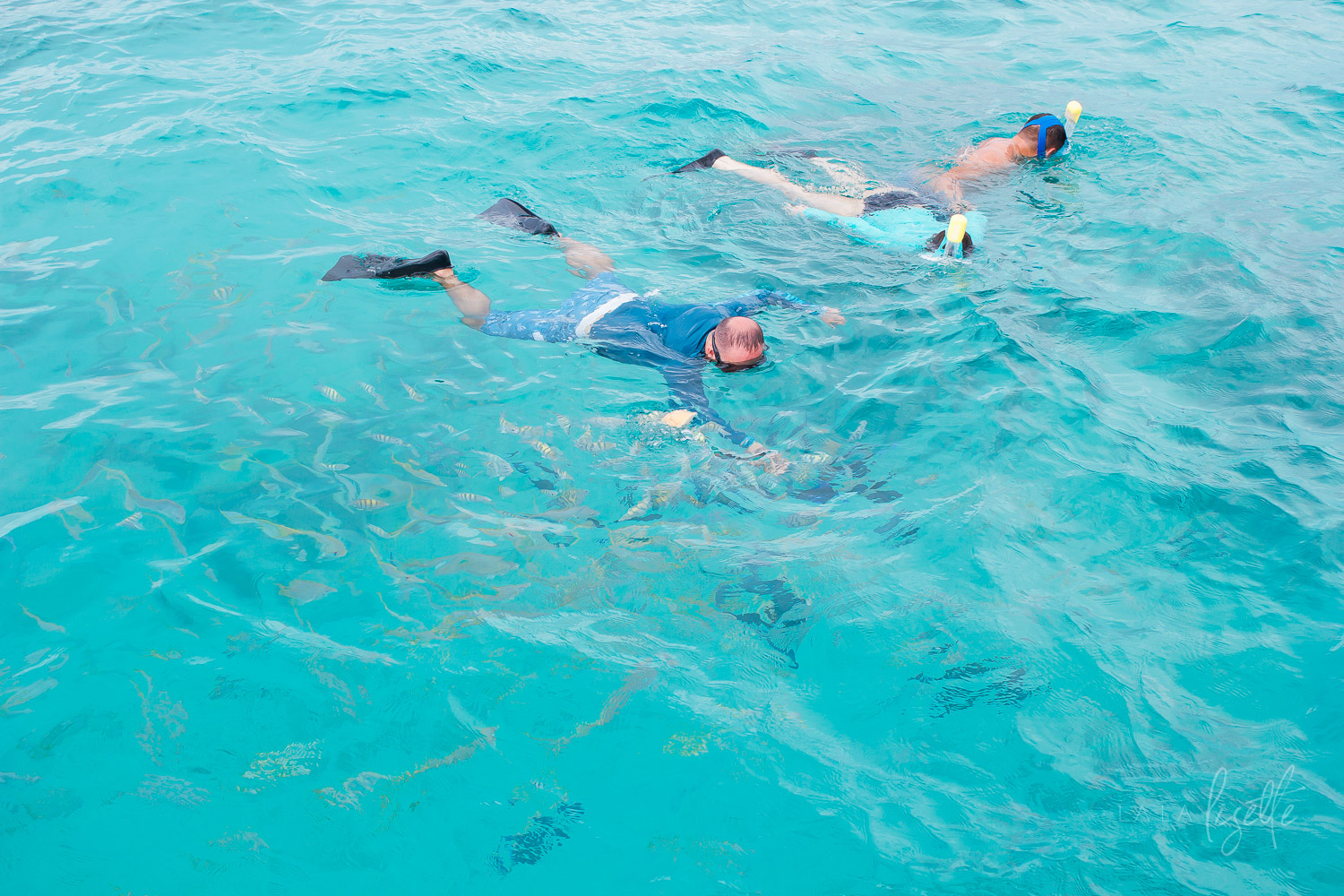 snorkeling-Icacos-Island-East-Island-Tours-Puerto-Rico
