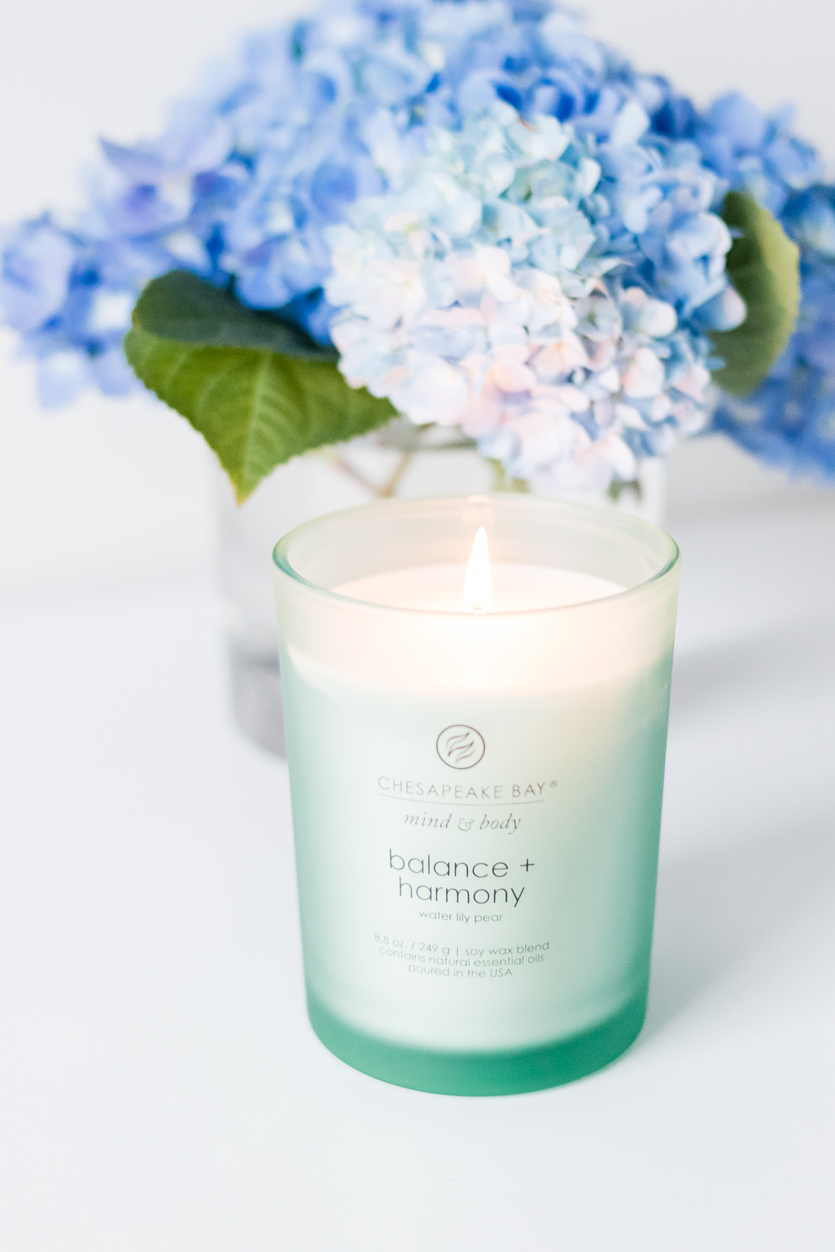 Chesapeake Bay Candle Balance & Harmony