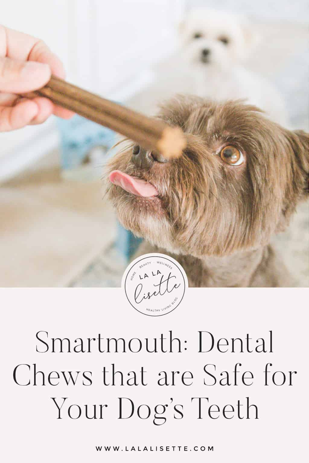Smartmouth dental chews are safe dog chews that help keep your dog's teeth clean, freshen breath, and support joint health with non-GMO ingredients